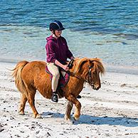 Three young girls / teenagers riding Shetland ponies on sandy beach along the Scottish coast on the Shetland Islands, Scotland, UK