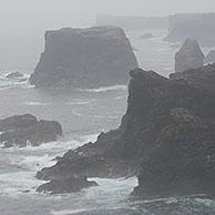Sea stacks and cliffs in the mist at Eshaness / Esha Ness, peninsula in Northmavine on the island of Mainland, Shetland Islands, Scotland, UK