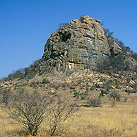 Koppie dominating the landscape. Koppies are hills composed of rhyolite. Kruger National Park, South Africa