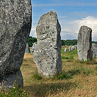 Neolithic menhirs / standing stones at Carnac at dusk, Brittany, France