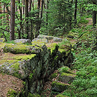 The Pagan Wall / Mur Païen in forest near Mont Sainte-Odile, Vosges, Alsace, France <BR><BR>More images at www.arterra.be</P>